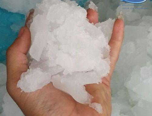 Jenis dan Bentuk Es Batu